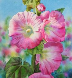 Indoor Gardening Quick, Clean Up, And Pesticide Free - Make Your Own Radiant Pinks Barbara Fox Art Studio Watercolor Artists, Watercolor And Ink, Watercolor Flowers, Watercolor Paintings, Watercolours, Floral Paintings, Hollyhocks Flowers, Fox Painting, Guache