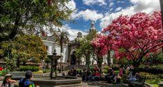 Todos a votar por Quito, la mejor ciudad del mundo (VIDEO)