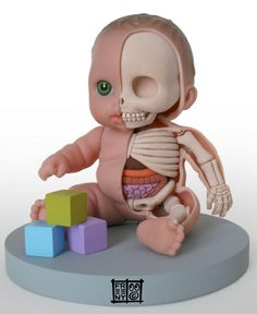 I think it is kinda scarry looking, but it could be used for anatomy class for anatomy of a baby. mmm. strange doll to have in the room at night.