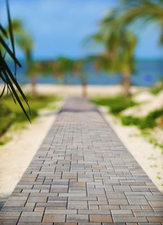 We're still in the summer state of mind as we daydream about walking down this beautiful Belgard Catalina Stone walkway to the beckoning beach. Backyard Pavers, Paver Walkway, Front Walkway, Walkway Ideas, Backyard Ideas, Patio, Brick Path, Brick And Stone, Outdoor Projects
