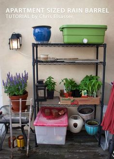 Picture of DIY Rain Barrel - sized for an apartment - Nice!
