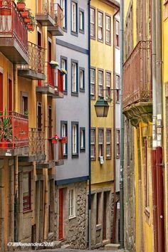 Meu Porto visto pelo fotógrafo Agostinho Fernandes Porto City, Portuguese Culture, The Good Place, Beautiful Pictures, Europe, Architecture, Amazing Places, Travelling, Spaces