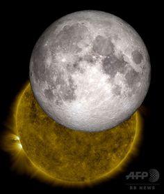 米航空宇宙局(NASA)が公開した、月が重なって太陽が欠けて見える画像と、同じ時間、同じ位置の月の3Dモデルを合成した画像(2013年6月14日公開)。(c)AFP/NASA/SDO/LRO/GSFC ▼12Oct2014AFP|【特集】地球の衛星「月」 ─ 月食、アポロ計画、スーパームーン http://www.afpbb.com/articles/-/3028525