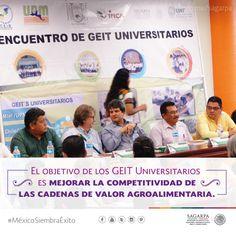 El objetivo de los GEIT Universitarios es mejorar la competitividad de las cadenas de valor agroalimentaria. SAGARPA SAGARPAMX #MéxicoSiembraÉxito