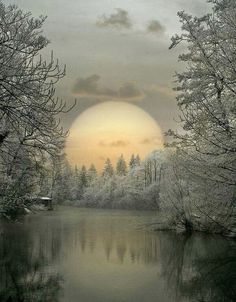 Ideas winter landscape photos earth for 2019 Foto Picture, Winter Scenery, Jolie Photo, Winter Landscape, Nature Pictures, Pics Of Nature, Pretty Pictures, Beautiful Winter Pictures, Beautiful Winter Scenes