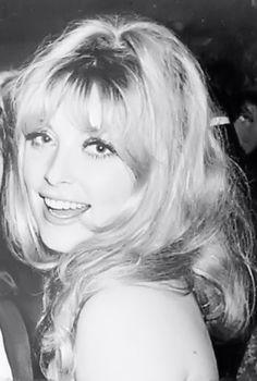 Hollywood Glamour, Old Hollywood, Hollywood Stars, Hollywood Actresses, Classic Hollywood, Timeless Beauty, Classic Beauty, 1960s Hair, Roman Polanski