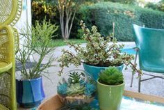 Fresh or faux, potted plants help pull your patio decor together. #TuesdayMorning