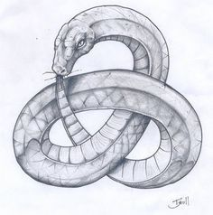 A fun image sharing community. Explore amazing art and photography and share your own visual inspiration! Tattoo Drawings, Body Art Tattoos, Tatoos, Snake Tattoo, I Tattoo, Ouroboros Tattoo, Slytherin Aesthetic, Desenho Tattoo, Celtic Tattoos