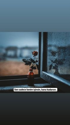 Instagram Story Ideas, Medan, Cool Words, Quotations, Northern Lights, Islam, Literature, Love, Feelings