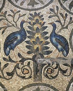 Peacocks. Ornamental tiling of mosaic of Vth century. Aquileia (Italy), Early Christian basilica.