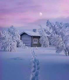 Find images and videos about winter, snow and landscape on We Heart It - the app to get lost in what you love. Winter Szenen, Winter Cabin, Snow Cabin, Winter Photography, Nature Photography, Snow Scenes, Winter Beauty, Winter Pictures, Winter Landscape