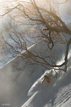 "Julie Nieuwenhuijs - My favorite kind of the diet, the ""Wasabi Powder Diet"" - Hakuba, Japan, January 2015 - Photography by Caroline van't Hoff - More on  https://www.facebook.com/juulski.ca | https://www.instagram.com/dutchiesdoski/ | http://carolinevanthoffphotography.viewbook.com/"