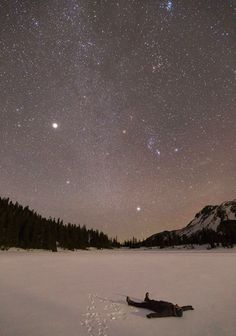 Majestic starry view...