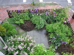 Front yard garden