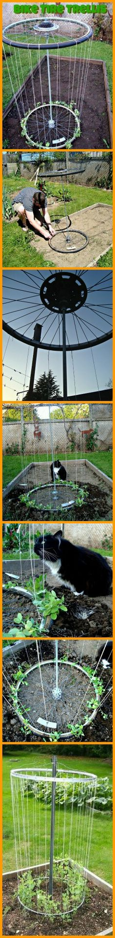 This project will show you that it's possible to make a garden trellis that is functional, easy to make, and cheap.  Reuse bike wheels and rims as a garden trellis!