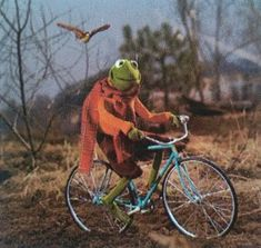 Hank Green, Green Man, Potter Puppet Pals, Horrible Histories, My Big Love, Kermit The Frog, Paul Rudd, Jim Henson, Johnlock