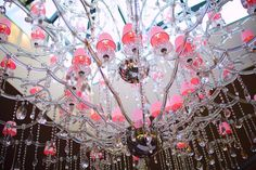 Château de Beaulieu #marcmeurin #roseevents #mariage #receptions #wedding #jardindalice #meurin #deuxétoiles #bibgourmand #michelin #relaischateaux #chefétoilé #chateaudebeaulieu #hautsdefrance #tourisme #northoffrance #gourmet #frenchgastronomy #pasdecalais #restaurant #hotel #food