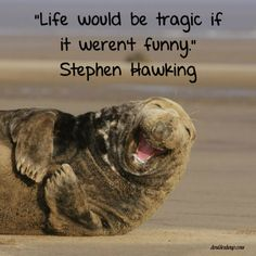 """Quote: """"Life would be tragic if it weren't funny."""" Stephen Hawking #inspiration #davidshoup #quotes #stephenhawking"""