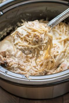 Slow Cooker Chicken Tetrazzini. A creamy chicken spaghetti dinner your ...