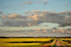Down Rural Roads by Steph Peesker, via 500px