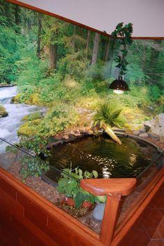 Indoor turtle pond....start to finish !!!