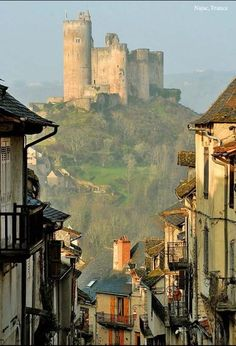 castle in france--- love how it captured the  street with the hill and castle in the distance