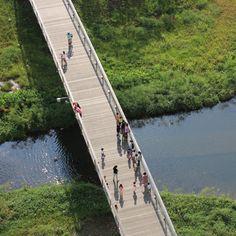 Résultats Google Recherche d'images correspondant à http://static.dezeen.com/uploads/2012/10/dezeen_Atelier-Dreiseitl-Kallang-River-Bishan-Park_sq2.jpg
