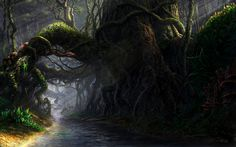 fantasy woods | Fantasy Forest Wallpaper/Background 1920 x 1200 - Id: 243217 ...