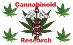 Cannabidiol CBD Research Studies from 1971 to 2013 - Complete List - TONS of info and links to research studies on the health benefits proven by science.