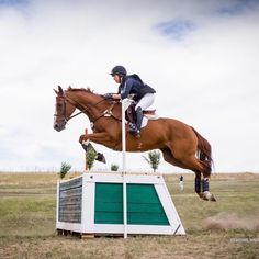 With the same silhouette as our classic logo t-shirt, this sustainable version is made from recycled fibre. Thoroughbred Horse, Dressage, Cross Country Jumps, Salt Lake County, Best Positions, Horses For Sale, His Travel, Show Jumping, Horse Tack