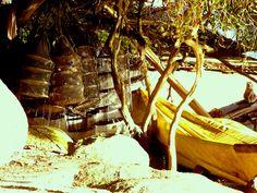 Apetrechos dos pescadores que ainda persistem nesta antiga Vila de pescadores.