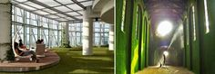 """Wo-Built Inc: Design + Build Construction Company: Indoor Landscapes: Companies See the Light of a whole New Level of """"wow, cool!"""""""