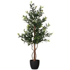 Add some colour and life into your home with this glorious Faux Olive Tree. The artificial plant is perfect for bringing character to any room - B&M Stores