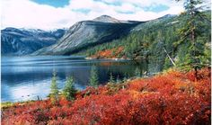 National park Magadanskiy. Magadan area, Russia.