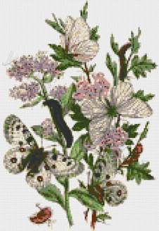 Butterflies with flowers cross stitch kits