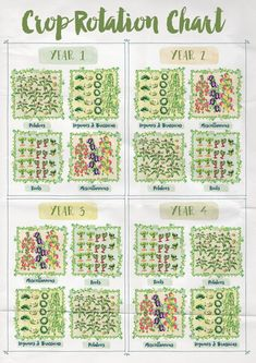 Are you dreaming of a potager kitchen garden? Learn such a potager garden is, how to design your kitchen garden with some more sample the kitchen potager garden layout Potager Bio, Potager Garden, Veg Garden, Vegetable Garden Design, Edible Garden, Vegetable Gardening, Vegtable Garden Layout, Vegetable Garden Planning, Garden Planting Layout