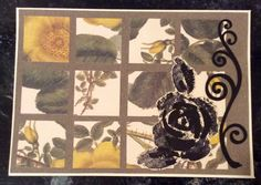 """Entered in simonsaysstampblog.com Wednesday """"Anything Goes"""" Challenge.  """"Scrap Buster"""" card. Punched variety of coordinating squares. Adhered to solid panel, then to card. Added cutout scroll I had leftover from an earlier project. Stamped rose and leaves on old book paper, cut out and added to card."""