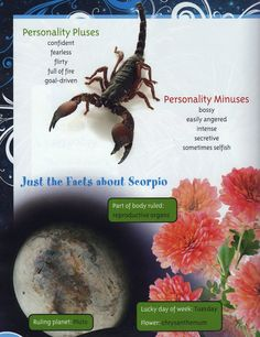 Walking In Beauty: Scorpio