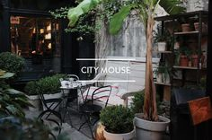 Table of Contents: City Mouse ; Gardenista
