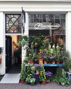 an abundance of plants and flowers @fleurmonde_amsterdam part 1 #amsterdam #amsterdamworld by maeandmany