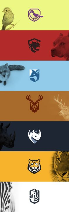 Shield animals 2 #logo #shield #emblem #badge #logodesign #design #branding #sports #auto #car #automotive #animal #sparrow #dog #pitbull #fox #rhino #zebra #deer #buck #tiger #creative #kreatank