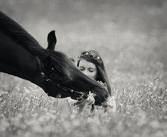 Francesca Morrison Equine Photography