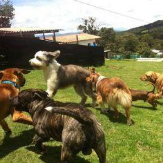 Sussy con sus amigos
