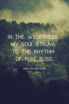 """soulful nature quote with trees, fog, and mountains.""""In the wilderness, my soul strums to the rhythm of pure bliss. Rain Quotes, Soul Quotes, Peace Quotes, Wisdom Quotes, Deep Quotes, Quotes Quotes, Wander Quotes, Wilderness Quotes, Wilderness Tattoo"""