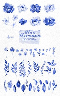 Blue Florence. 50 Watercolor floral Elements hand by OctopusArtis