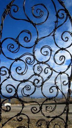 Chicken wire trellis