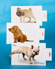 If you're looking for a one-of-a-kind greeting card, try these mechanical dog cards with clever moving parts that are sure to charm the recipient.
