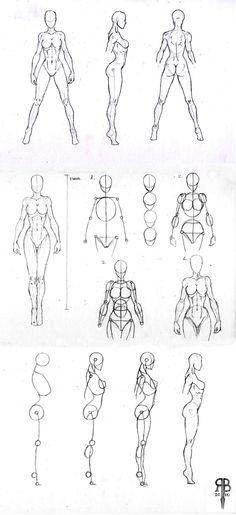 female body shapes (900x1964)