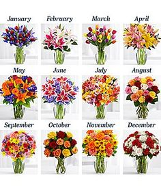 Order your Anniversary flowers today. We have flower ideas by anniversary year and by month to help you choose. Anniversary Flowers, Year Anniversary Gifts, Flowers Today, Rainbow Roses, Military Gifts, Clear Vases, Client Gifts, Corporate Gifts, Inspirational Gifts