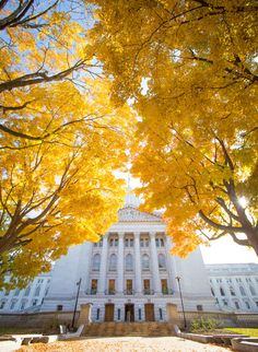 48 Hrs of Things to Do in Madison, WI Discover Wisconsin's capital city with this guide! From nature and culture to shopping and great food, you'll find it all in Madison, WI. Wisconsin Getaways, Places To Travel, Places To See, Madison Wisconsin, Road Trip Usa, Travel Usa, Things To Do, Vacation, Explore